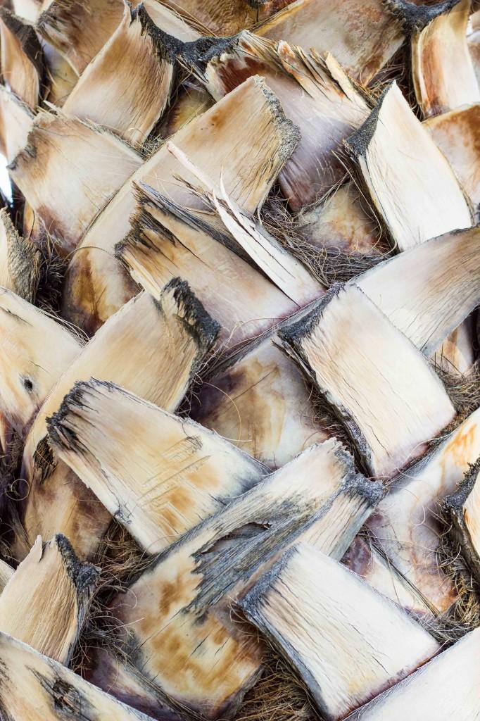 Salt & Vinegar Grilled Potato Wedges-0289