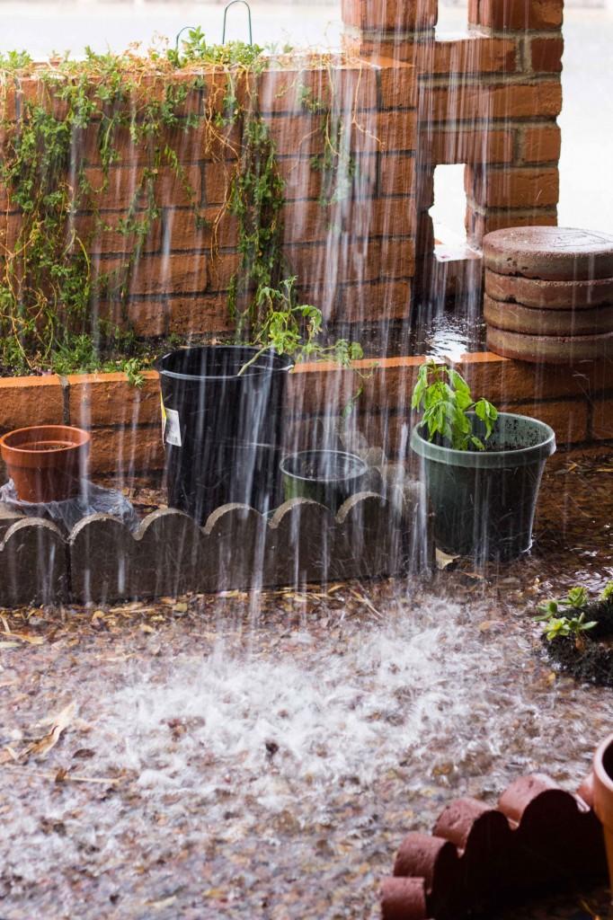 Rain!-3673