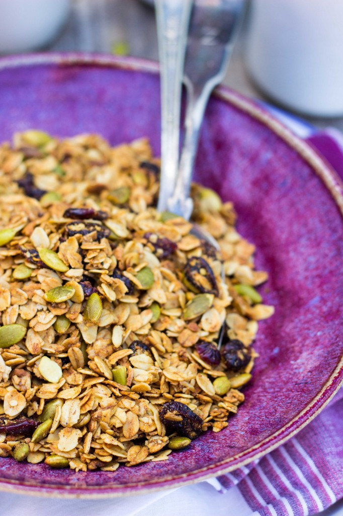 Pumpkin Spiced Granola with Pepitas & Dried Cranberries-4791