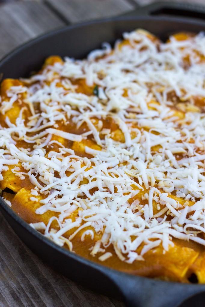 Veggie Enchiladas with Pumpkin Enchilada Sauce {gluten free + vegan}-5207
