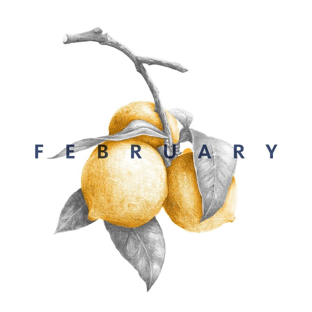 February_Instagram