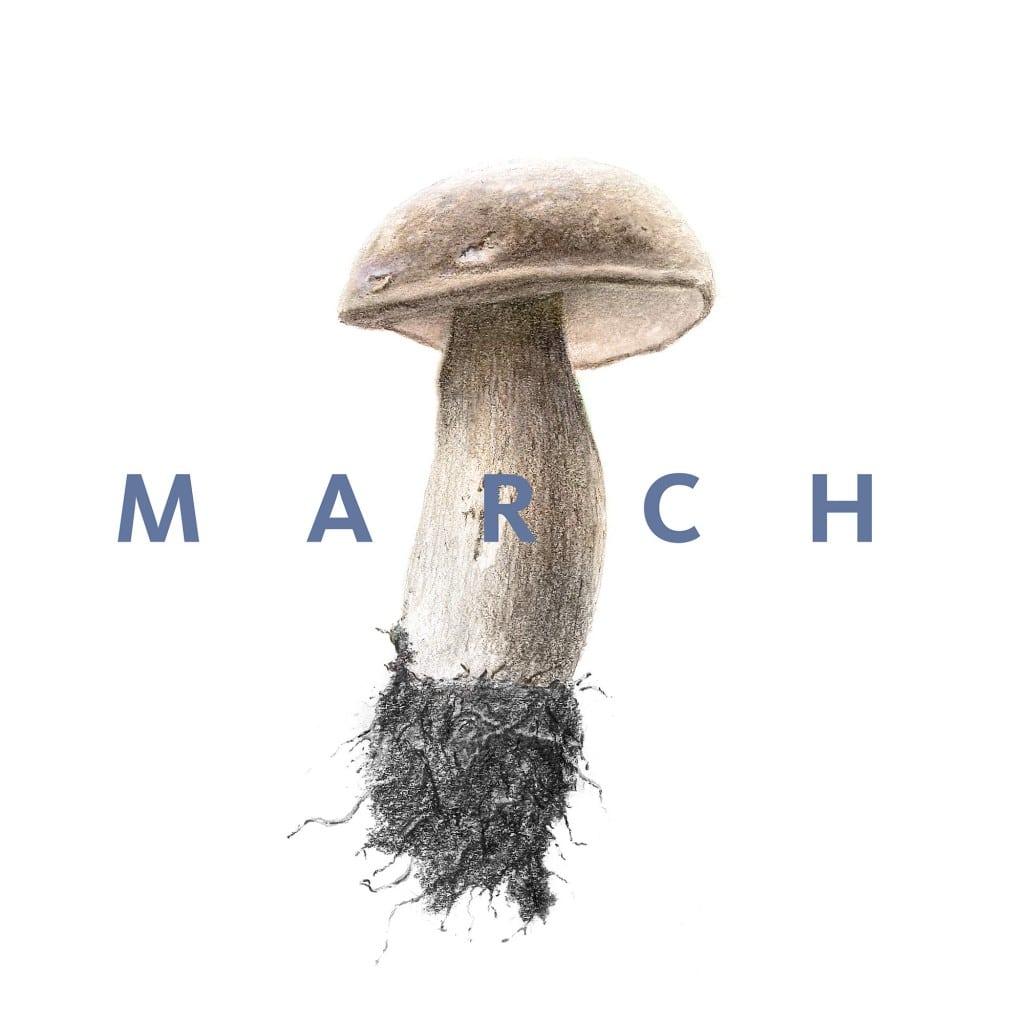 March_Instagram