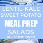 Lentil Kale Sweet Potato Meal Prep Salads Pinterest long pin