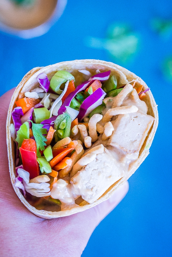 A hand holding these Crunchy Asian Tofu Peanut Wraps with a blue background.