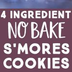 Pinterest long pin for No Bake S'mores Cookies