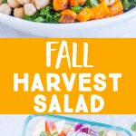 Pinterest collage pin for Fall Harvest Salad